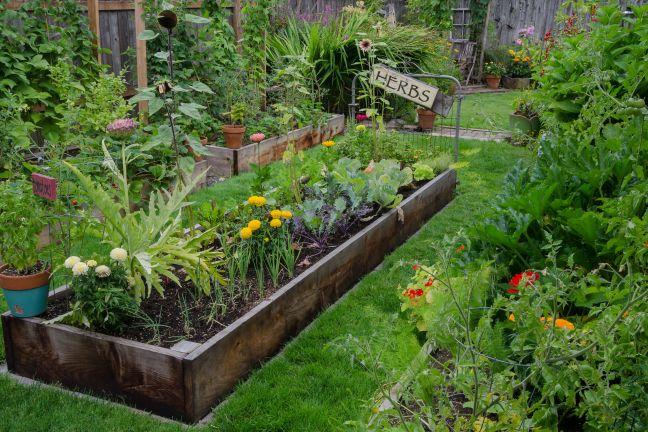 General Garden Image